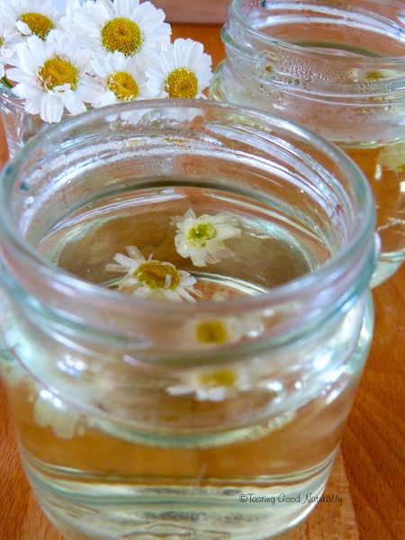 Infusion fleurs camomille