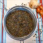 Poireaux aux lentilles – Vegan