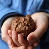 Tasting Good Naturally : Muffin au chocolat et pépites de cacao #vegan