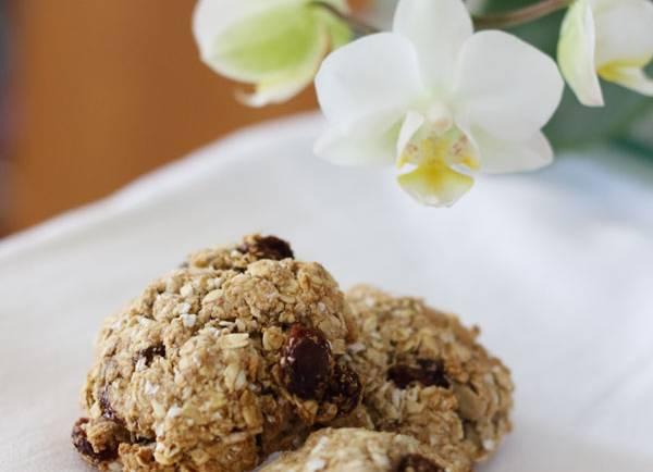 Tasting Good Naturally : Biscuits aux flocons d'avoine et raisins secs véganes