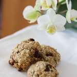 Tasting Good Naturally : Biscuits aux flocons d'avoine et raisins secs véganes