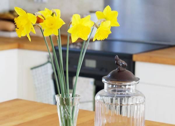 Tasting Good Naturally : Mes Indispensables dans ma cuisine végétalienne