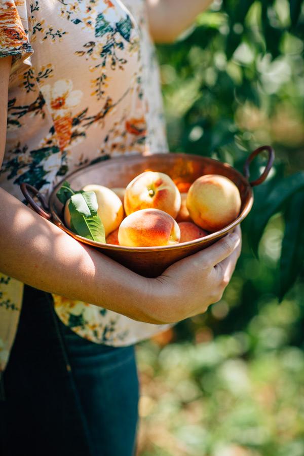 Tasting Good Naturally : En Naturopathie, on préconise d'avoir une alimentation saine et équilibrée en évitant au maximum les pesticides. Mais les pesticides, c'est quoi au juste ?