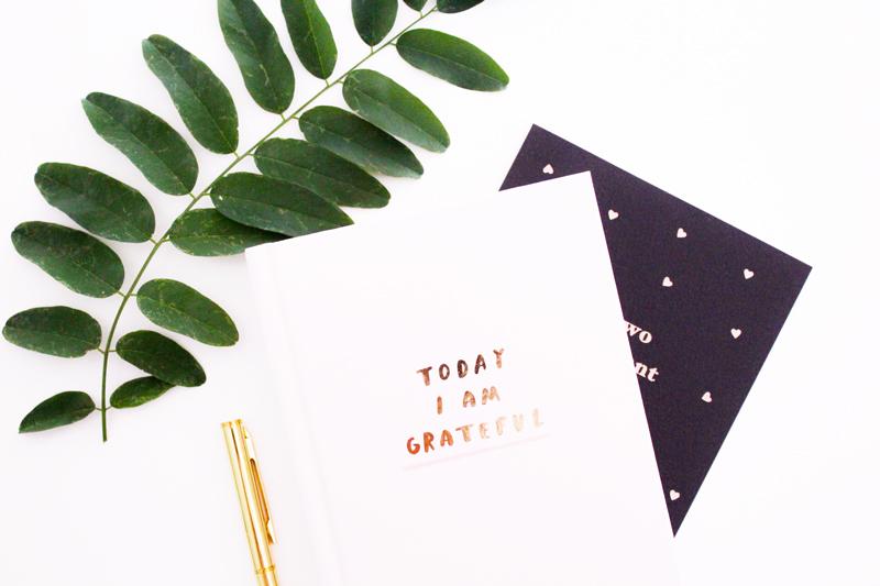 Tasting Good Naturally : En ce 2ème jour des 31 choses pour bien commencer l'année, j'avais envie de vous parler du carnet de gratitude. Le carnet de gratitude est un outil puissant pour cultiver la pensée positive.