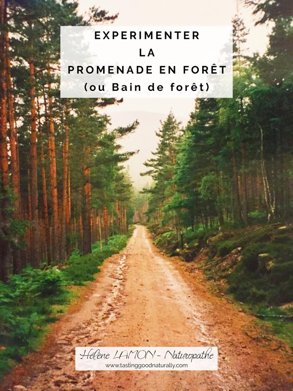 Tasting Good naturally : Que diriez-vous d'expérimenter la promenade en forêt pour continuer sur nos 31 choses à faire pour bien commencer l'année ? La forêt est un de mes lieux préférés pour me ressourcer.