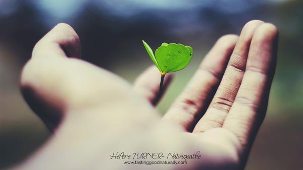 Hélène TURNER - Naturopathe : Un article de développement personnel, aujourd'hui, écrit avec le coeur sur le fait qu'il faut d'abord savoir déconstruire pour construire ou reconstruire. Et qu'au final tout est juste.