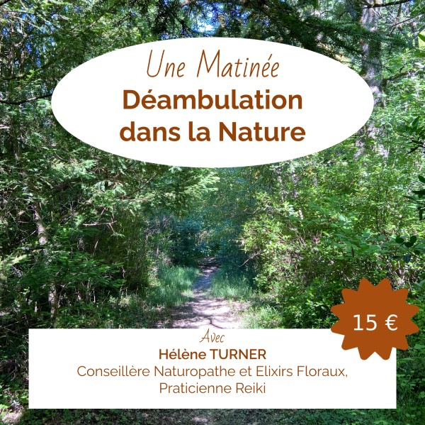 Marche Déambulation dans la Nature