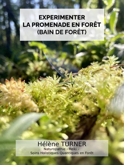 Hélène TURNER - Naturopathie - Reiki - Soins holistiques et quantiques en forêt : Que diriez-vous d'expérimenter la promenade en forêt ? La forêt est un de mes lieux préférés pour me ressourcer et faire des soins.
